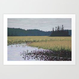 The Grassy Bay, Algonquin Park Art Print