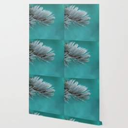 Blue spruce 3 Wallpaper