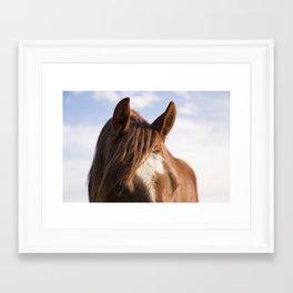 Modern Horse Print Framed Art Print