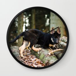 Cold snout playing in the forest Wall Clock