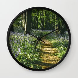 Path through wild Bluebells in ancient woodland. Wayland Wood, Norfolk, UK. Wall Clock
