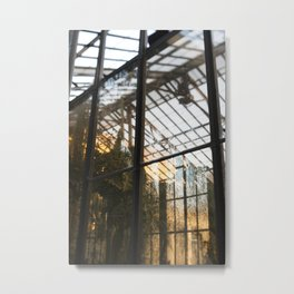 Golden Light in the Greenhouse Metal Print
