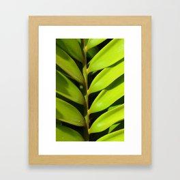 Vegetable balance - Green design Framed Art Print