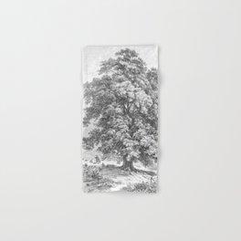Linden Tree Print from 1800's Encyclopedia Hand & Bath Towel