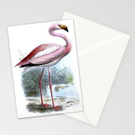 Puna Flamingo Stationery Cards