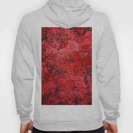 Charming Red Flower Hoody