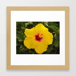 mi amor Framed Art Print