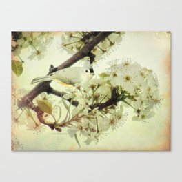 Tufted Titmouse Spring Flower Farmhouse Art Country Home Decor A132 Canvas Print