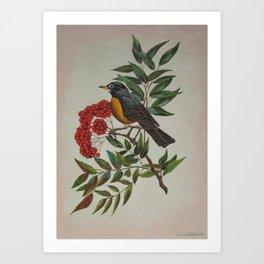 Still Life Bird Art Print