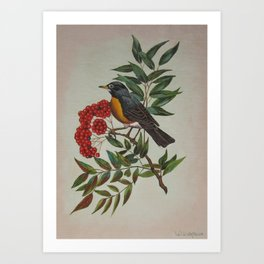 Still Life Bird Art Print