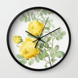 Vintage Rosa Hemisphaerica Flower Illustration Wall Clock