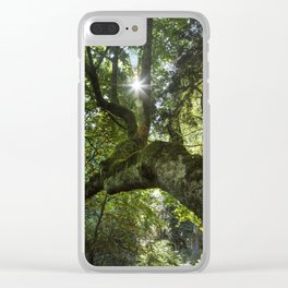 Beautiful Trees / 4 Clear iPhone Case