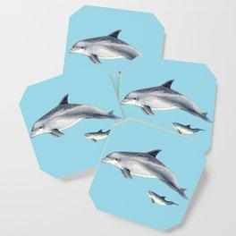 Blue Bottlenose dolphin Coaster
