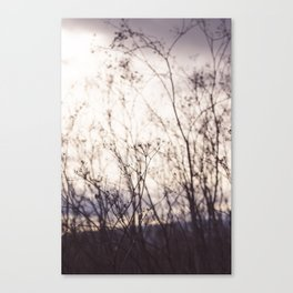 Wave in the Wind Canvas Print
