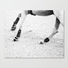 Rollback Canvas Print