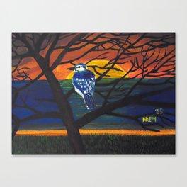 Beautiful Blue Jay Canvas Print