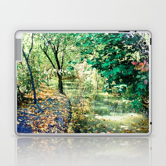 Hidden Autumn Creek Laptop & iPad Skin
