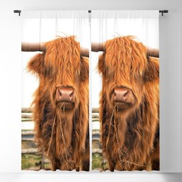 Highland Cow in a Fence Blackout Curtain