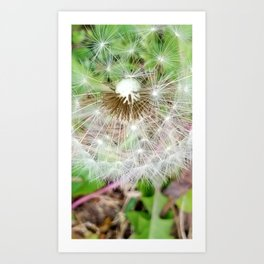 Time For Me To Fly 3 Art Print