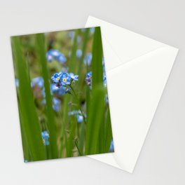 Belgian forget-me-nots (nature photography - fine art print) Stationery Cards