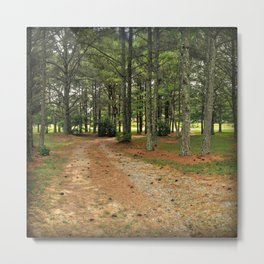 Right Neck of The Woods Metal Print