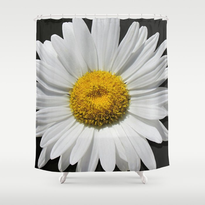 Contemporary White Daisy on Grey Pop Of Yellow Art A490 Shower Curtain