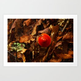 Temptation in forest Art Print