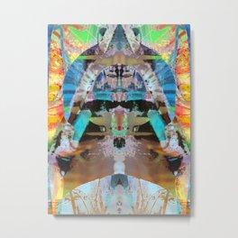 2013-01-10 12_36_51 Metal Print