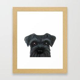 New Black Schnauzer, Dog illustration original painting print Framed Art Print