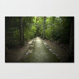 Mayan Path Canvas Print