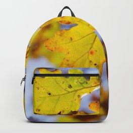 Oak Backpack