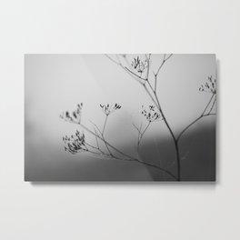 autumn fog Metal Print