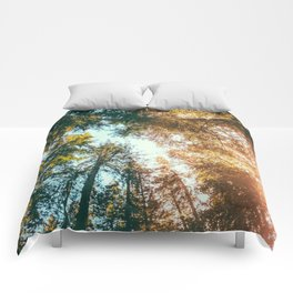 California Redwoods Sun-rays and Sky Comforters