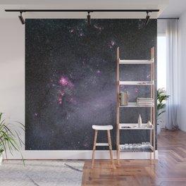Large Magellanic Cloud, 1986 Wall Mural