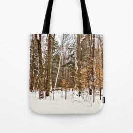 Maple Beech Forest in the Winter Tote Bag