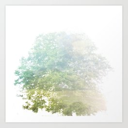 Where the sea sings to the trees - 9 Art Print