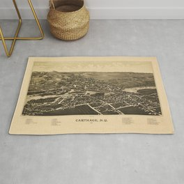 Aerial View of Carthage, New York (1888) Rug
