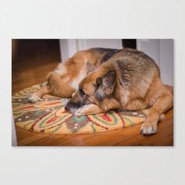 Snuggle Pup Canvas Print
