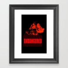 Endangered Tasmanian devil Framed Art Print