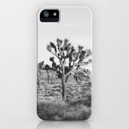 Large Joshua Tree in Black and White iPhone Case