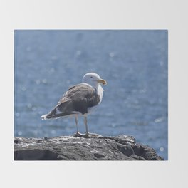 Seagull overlooking the ocean Throw Blanket