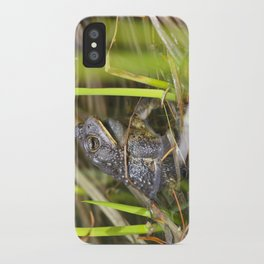 Toad in the pond iPhone Case