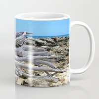 bleach Mugs featuring Bermuda  Driftwood by Judy Palkimas