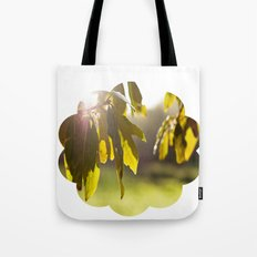 leaves at sunset Tote Bag