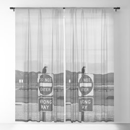Sign of the Raven Sheer Curtain