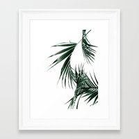 palms Framed Art Prints featuring Palms by Rachel De Vita