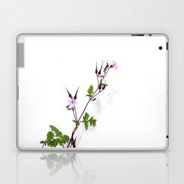 Near the house Laptop & iPad Skin
