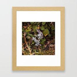 The Velveteen Rabbit Framed Art Print