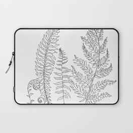 Minimal Line Art Fern Leaves Laptop Sleeve