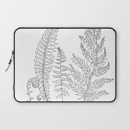 Minimal Line Art Fern Leaves Laptop Sleeve